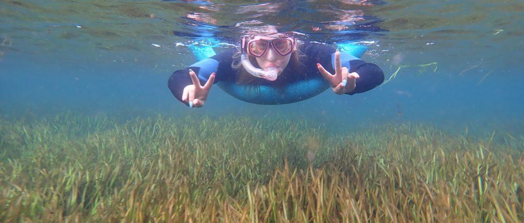 Eelgrass Flourishing in Crystal River Florida